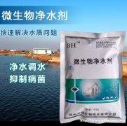 鱼塘钓塘无毒净水专业邦恒微生物净水剂