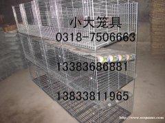 供应鸡鸽兔笼,狐狸笼,貉笼,鹌鹑笼,宠物笼及饮水器