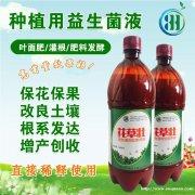 果园发酵堆肥的专用营养液
