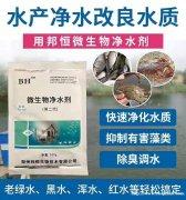 河水养鱼用什么杀菌净水