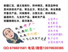 郑州棉花配资低中高档账户任你选搭配不同杠杆自由交易