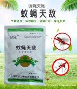 农贸市场用哪种类型的苍蝇药