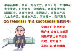 内蒙古大宗开户市场行情活跃下单员提成高加财务结算
